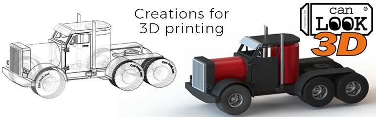 Canlook 3d is a service dedicated to 3d printing